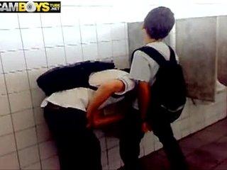 Twinks in toilet