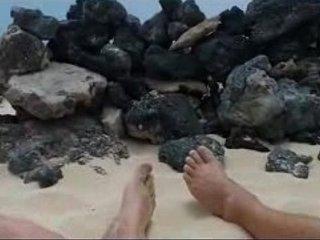 Paja en la playa con voyeurs mirando